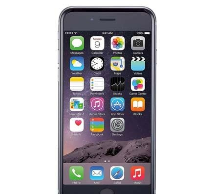 Apple iPhone 6 Plus Gray Front Screen